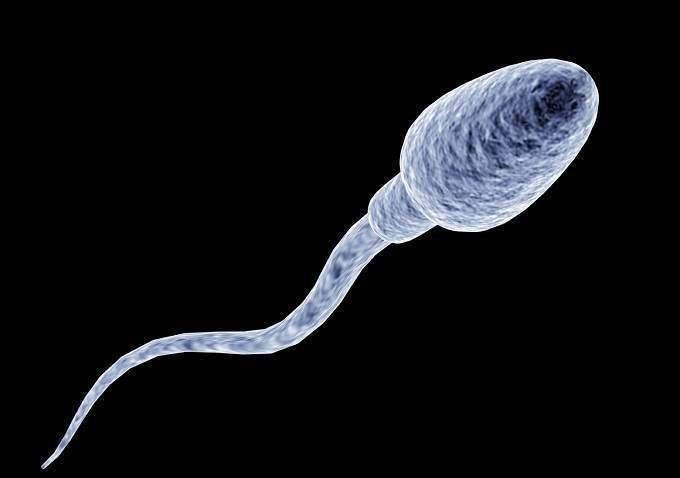Mơ thấy tinh trùng mang điềm báo gì?